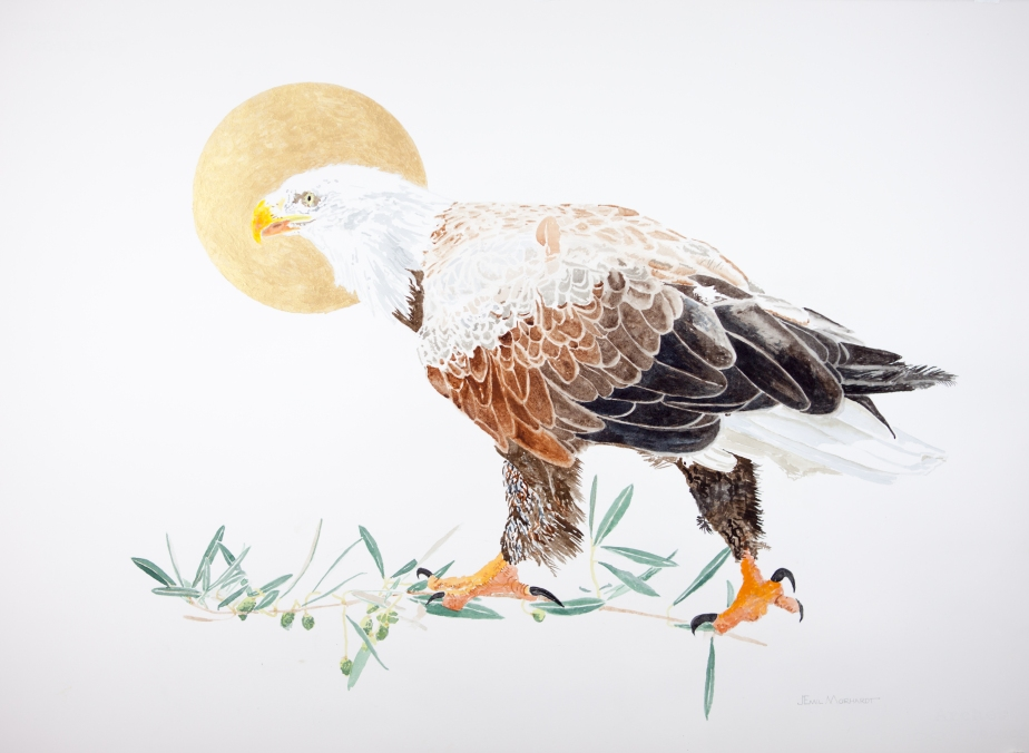 "Bald eagle #2 (Catalina Island): 22"" x 30"" watercolor on Arches 140 lb. hot pressed paper"