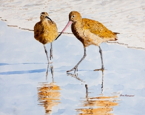 "Whimbrel & Godwit on Hendry's Beach, 16"" x 20"" Acrylic on Panel, SOLD"
