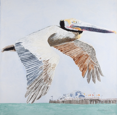 "Brown Pelican #2, 23"" x 23"", Acrylic, $1,000"