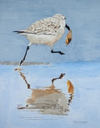 "Sanderling #13, Acrylic on panel, 16"" x 20"", $500"
