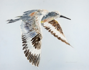 """Willet #8, 16"""" x 20"""" Acrylic, $500 SOLD"""