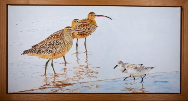 "3 Whimbrels, 2 Sanderlings, 15"" x 30 "" Acrylic on Canvas. $900"