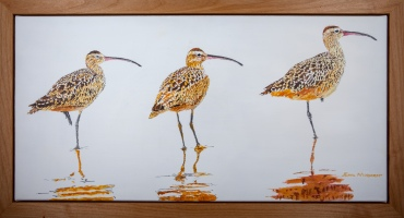 "3 Whimbrels, 15"" x 30"" Acrylic on Canvas, $900"