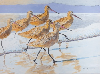 "6 Marbled Godwits rev 1, 18"" x 24"", Acrylic on canvas, $900"
