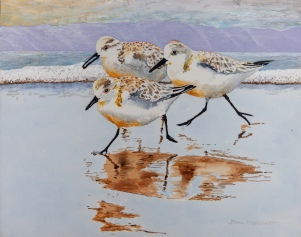 "Sanderlings #12.1, 16"" x 20"" Acrylic, $500"