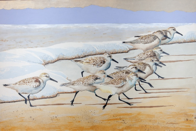 "Sanderlings #20, 24"" x 36"", Acrylic, $1,500"