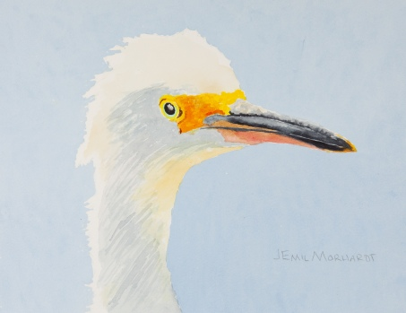 "Snowy Egret #2, Hendry's Beach, Santa Barbara 8"" x 10"" watercolor on Arches 140lb cold-pressed paper. Matted. $125"