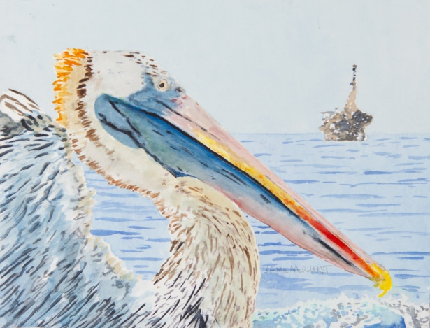 "Brown Pelican #4, Coal Oil Point, Goleta. 8"" x 10"" watercolor on Arches 140lb cold-pressed paper. Matted. $125"