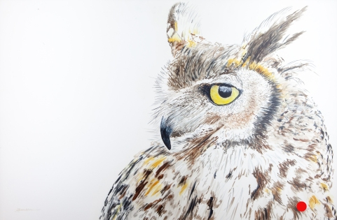 "Max, the Great Horned Owl, Santa Barbara Museum of Natural History 24"" x 30"" Watercolor, $1,100 SOLD"