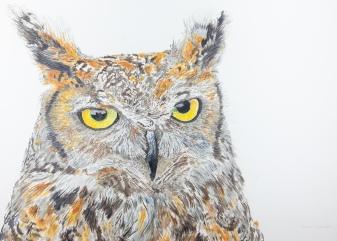 "Max, The Great Horned Owl, Santa Barbara Museum of Natural History. 22"" x 30"" Mixed Media on Panel, $1,000"