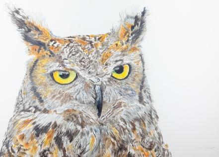 "Max, The Great Horned Owl, Santa Barbara Museum of Natural History. 22"" x 30"" Mixed Media on Panel, $1,000"