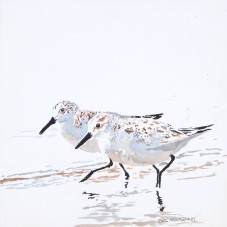 "Sanderlings #22, 8"" x 8"" acrylic on canvas $150"