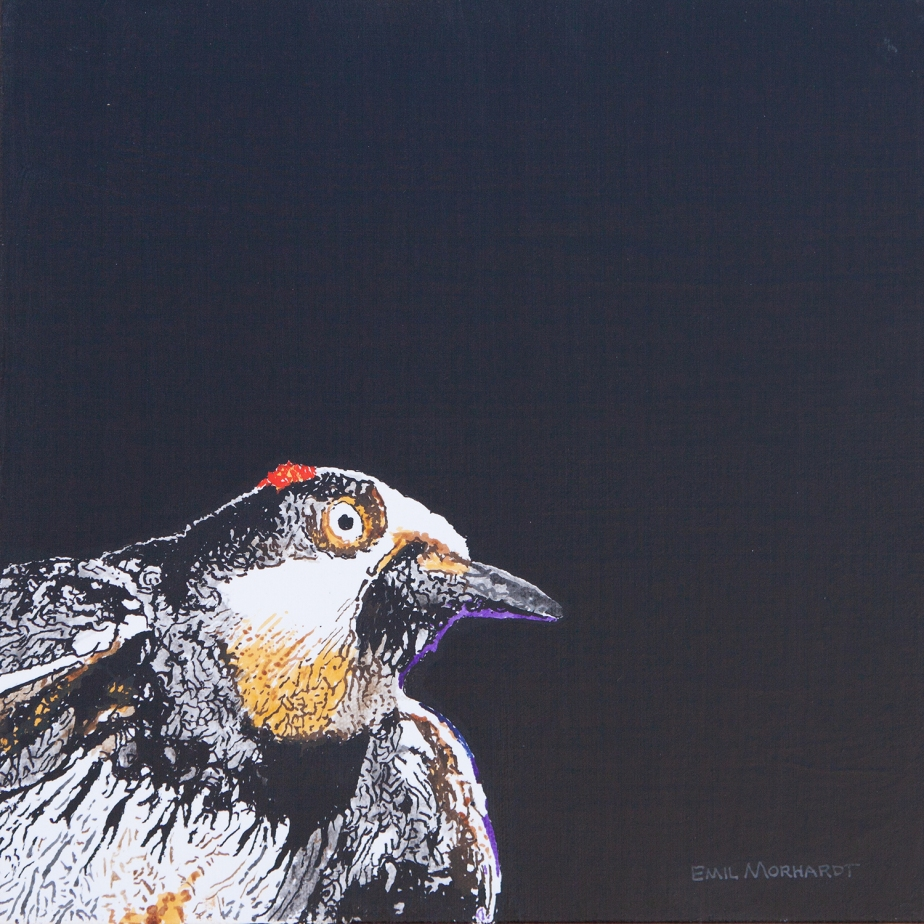 Image of a painting of an Acorn Woodpecker rising into the left corner of the canvas, against a black background.