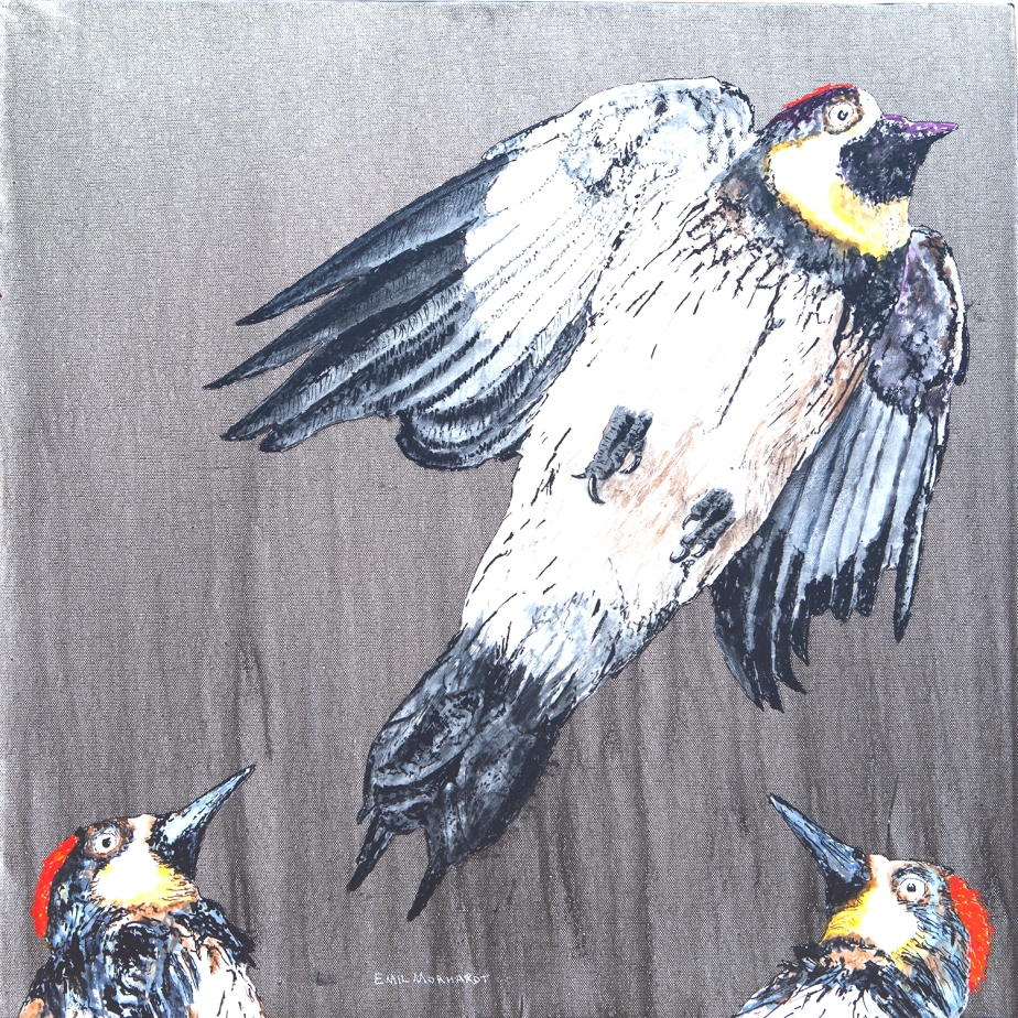 Image of a painting of two Acorn Woodpeckers watching a third mysteriously ascend, painted on a gray backgroujd.