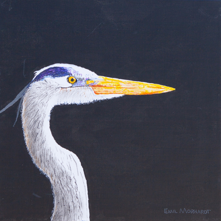 Image of a painting of a Great Blue heron with a black background.