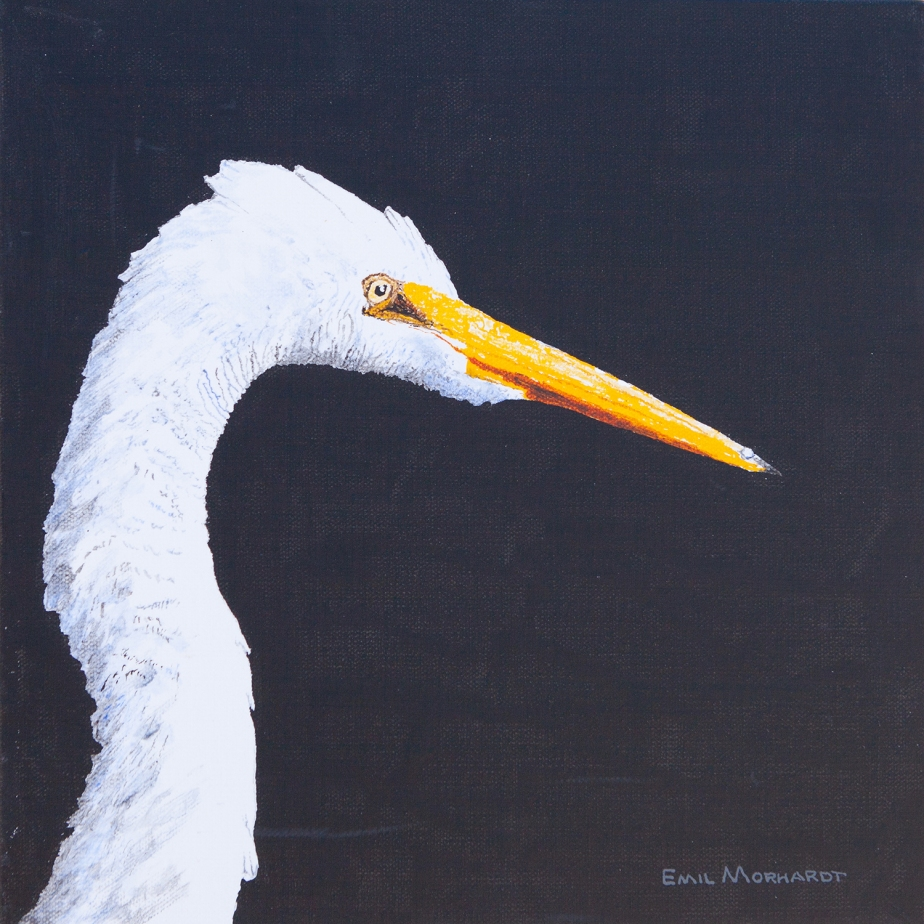 Image of a painting of a Great Egret head with a black background.