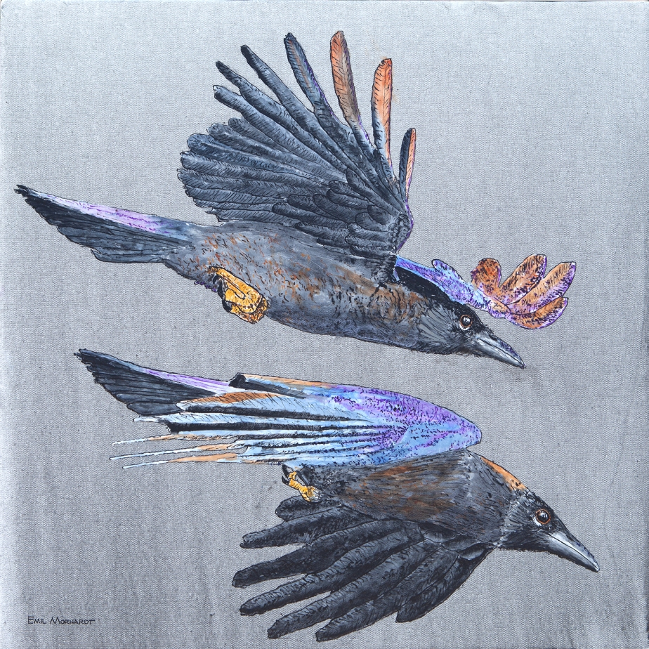 Image of a painting of a two flying American Crows with a gray background.